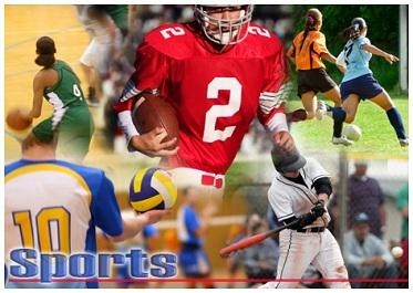Welcome to Brown County Middle School Sports League